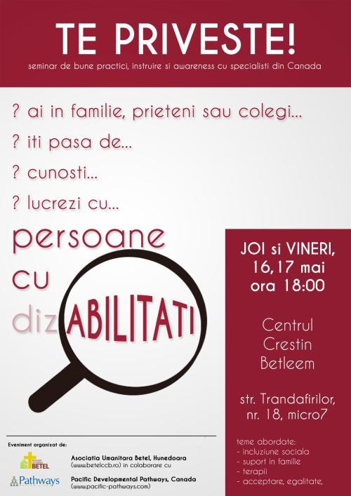afis-invitatie-seminar-dizabilitati
