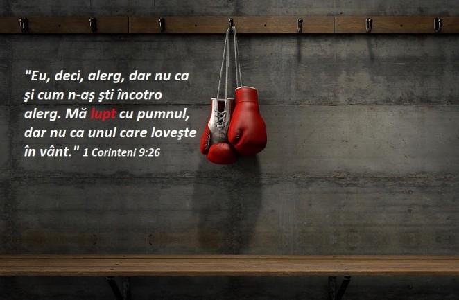 4-boxing-gloves-hanging-in-change-room-allan-swart